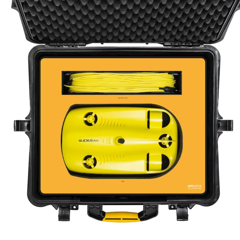 HPRC2710 for Chasing Innovation Gladius Mini